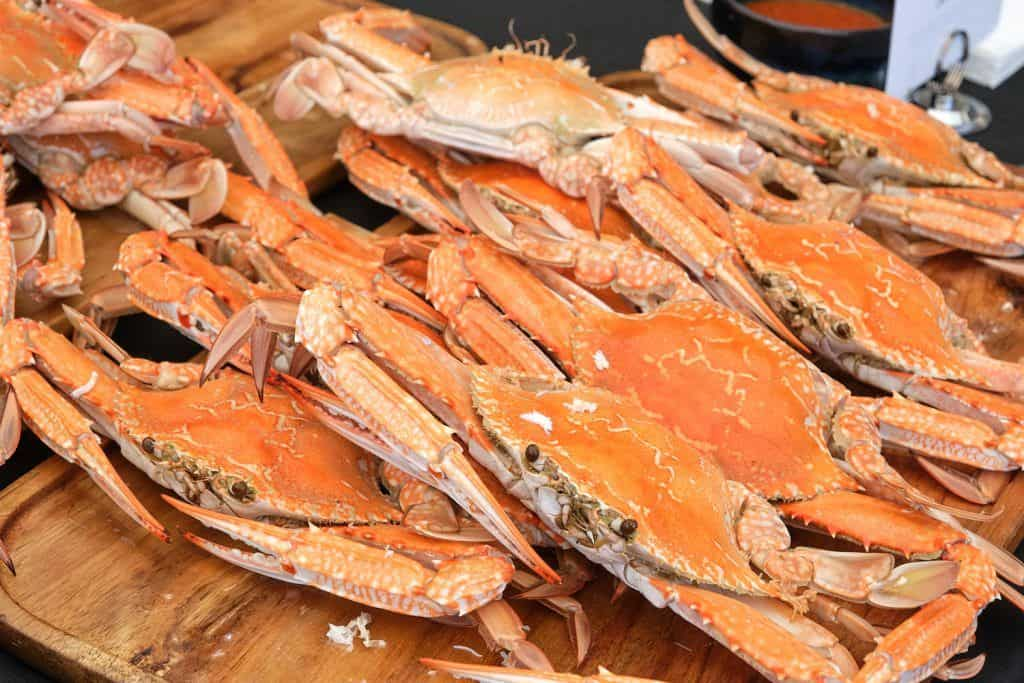 Channel 7 Mandurah Crab Fest Returns on March 14 & 15 5